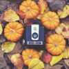 The Four Seasons: Autumn