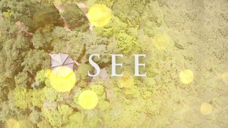 SEE (PEMD)