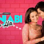 Punjabi Love Hits   Audio Songs   Eros Music