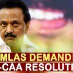 After Kerala, DMK MLAs Demand For Anti-CAA Resolution In Tamil Nadu