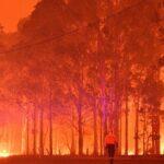 Skies turned blood-orange as fires trap 4000 people on Mallacoota beach in Australia