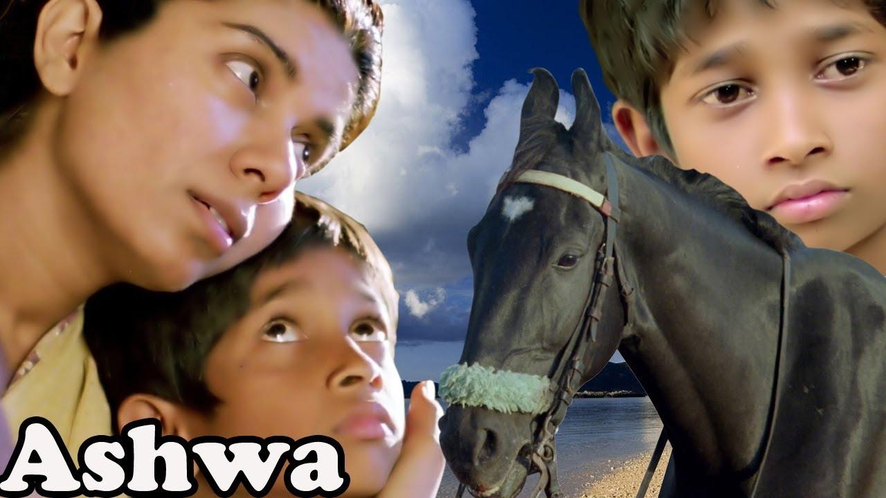 Ashwa   Bollywood Full Movie   Movies for Kids   Children's Hindi Movie   Animals Short Movies