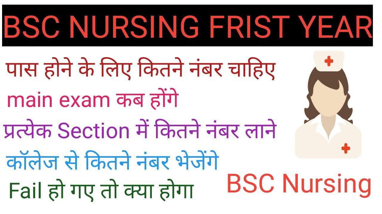 Bsc Nursing frist year full details