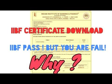 IIBF Result /Certificate  download (Provisional)
