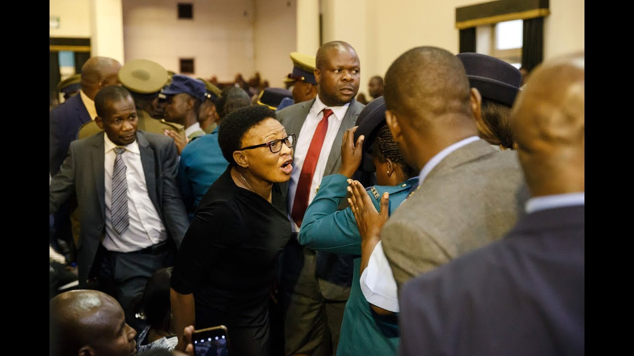 Zimbabwe MPs removed from parliament after refusing to stand when president entered - video